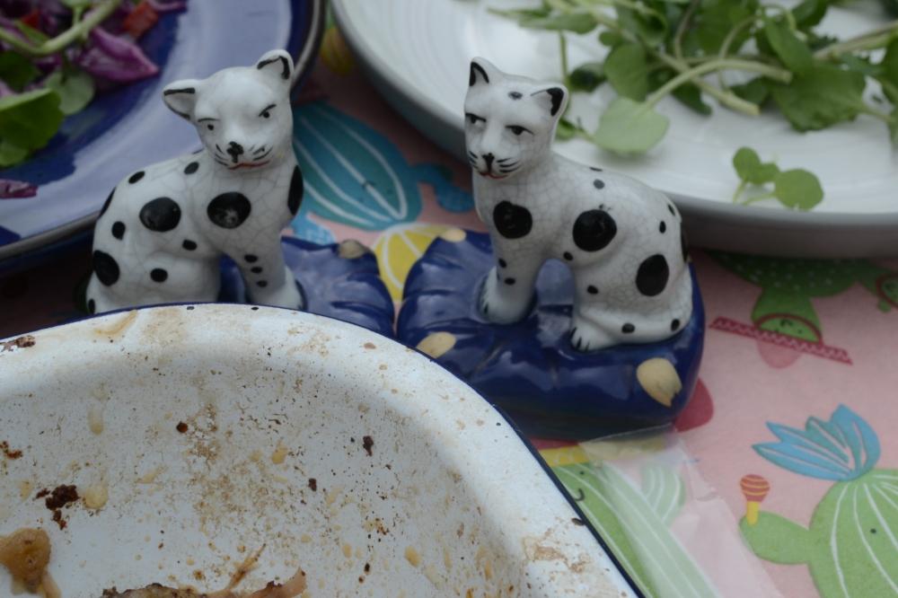 china-cats